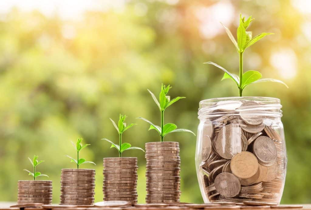 growing money with seeds