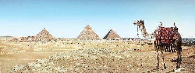 pyramids and a camel